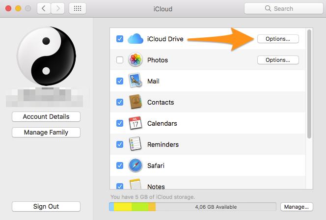 iCloud Drive Options