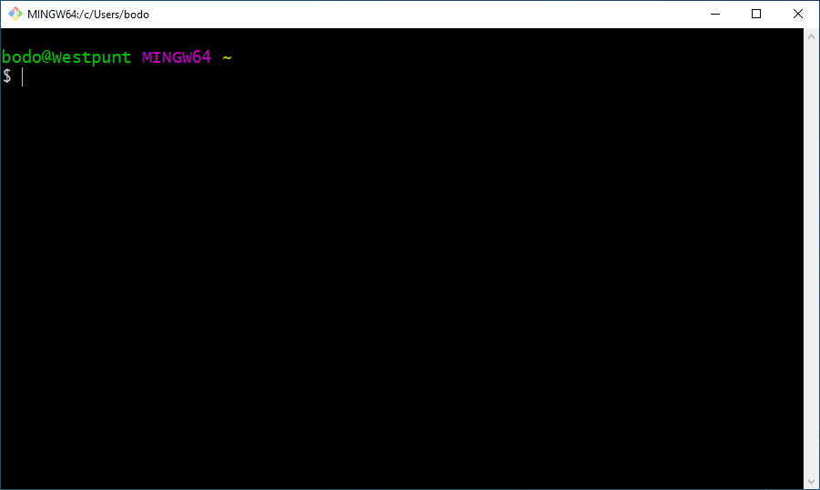 Git Bash window on Windows 10