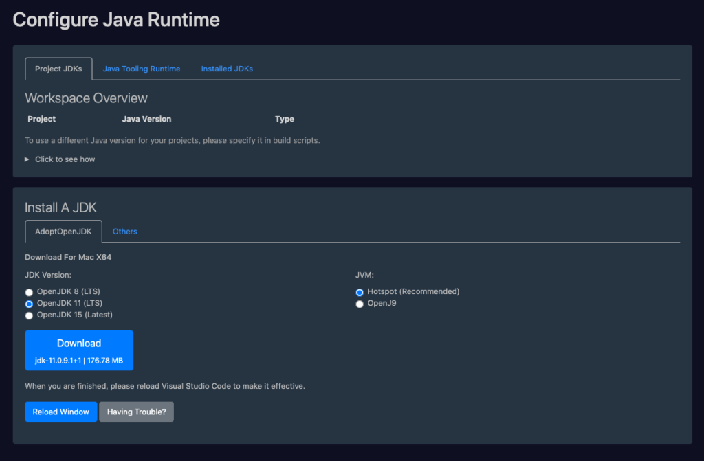 Configure Java Runtime in Visual Studio Code