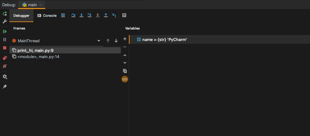 PyCharm Debug Window