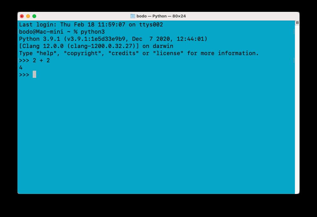 Python-Shell im Terminal ausführen